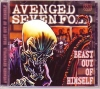 Avenged Sevenfold/Live At Summer Sonic 2007